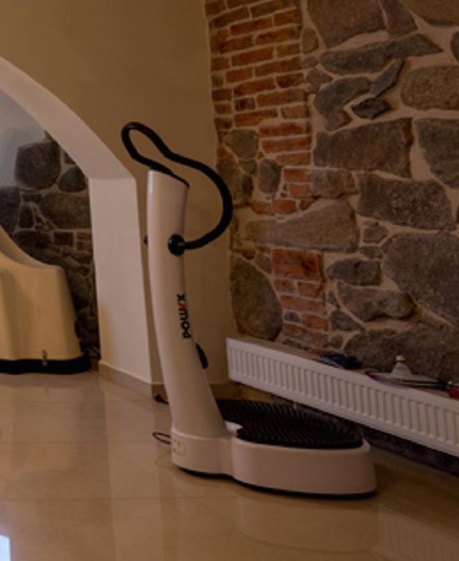 SPA sala fitness - platforma wibracyjna