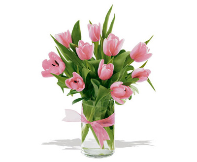 akacjowy-dwor-dzien-matki-kwiaty